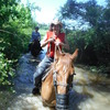 Horseback riding/lessons on beautiful Spring Creek