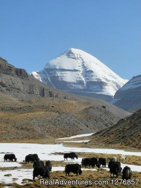 Mt. Kailash in Tibet while on the tour - Nepal Trekking & Tour Agency
