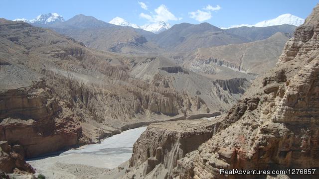 - Nepal Trekking & Tour Agency