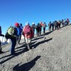 The premier outfitter for climbing Mt.Kilimanjaro Arusha, Tanzania Wildlife & Safari Tours