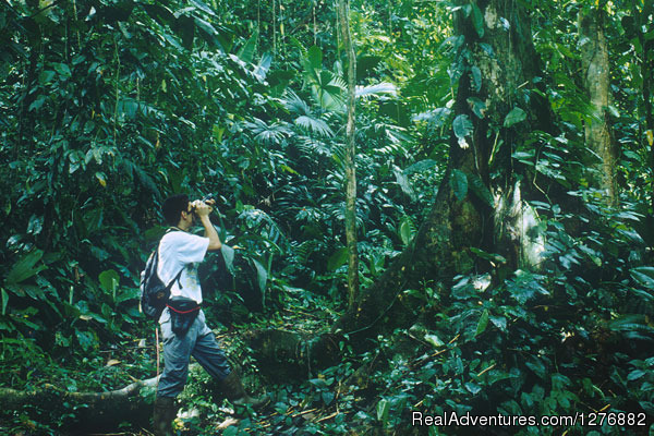 Desafio Adventure Company Costa Rica Monteverde Tours