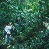 Desafio Adventure Company Costa Rica Rafting Trips Costa Rica