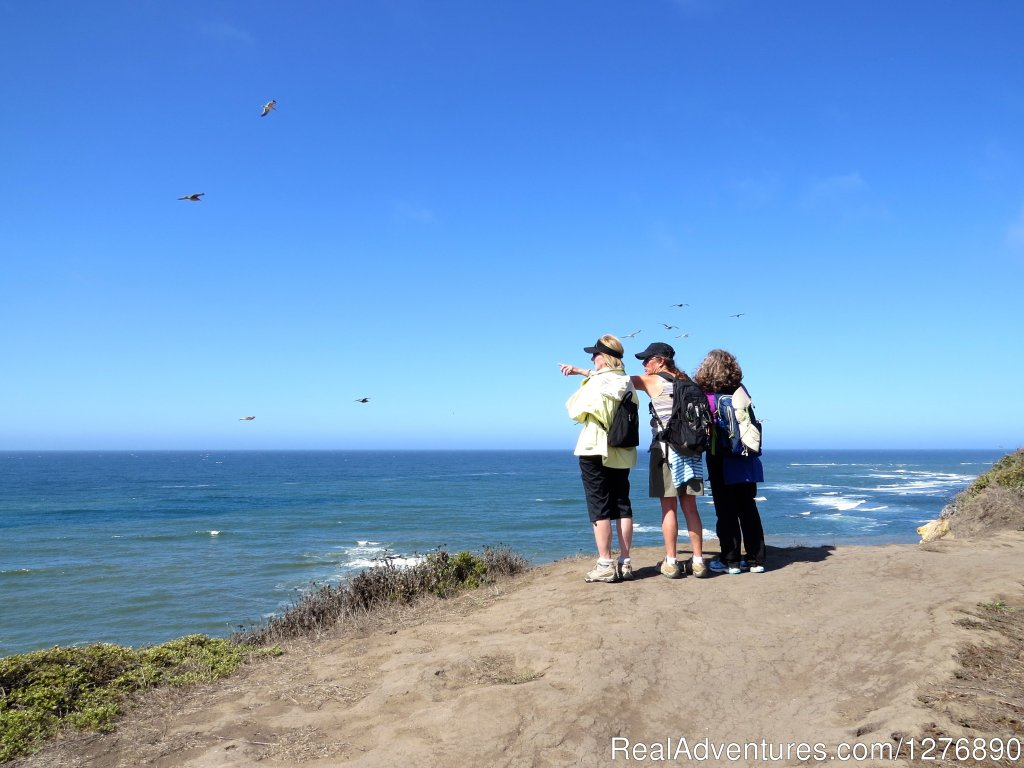 Overlooking Mavericks Beach | Image #12/17 | Inn to Inn Hiking to San Francisco