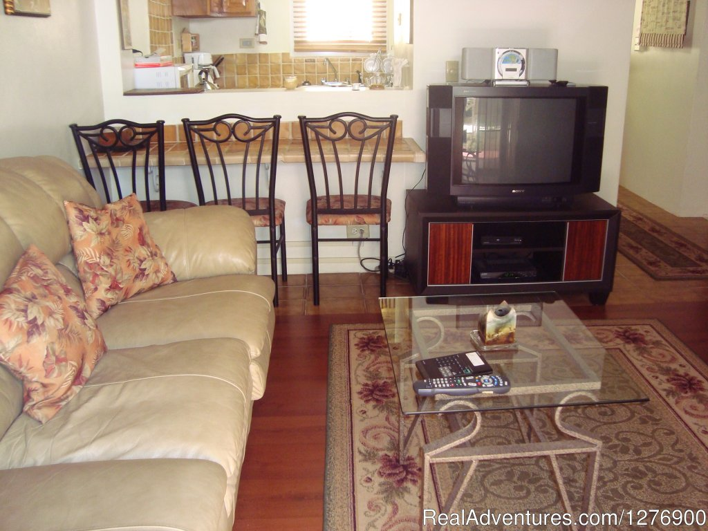 Living room with dining counter | Image #6/9 | Beautiful Apartment near Golf and Beaches-sleeps 4