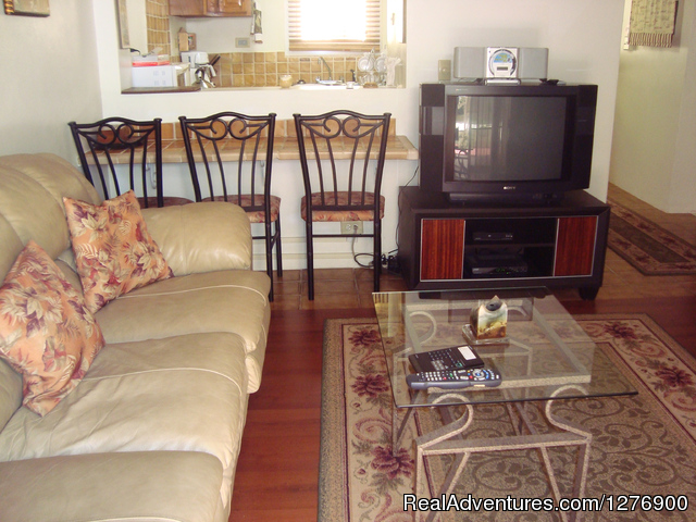 Living room with dining counter - Beautiful Apartment near Golf and Beaches-sleeps 4