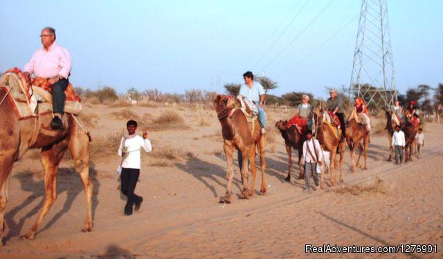Camel Safari - Umaid Safaris & Desert Lodge, Bikaner