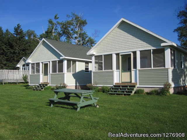 One Storey Cottages - We Offer Something For Everyone At Briarwood