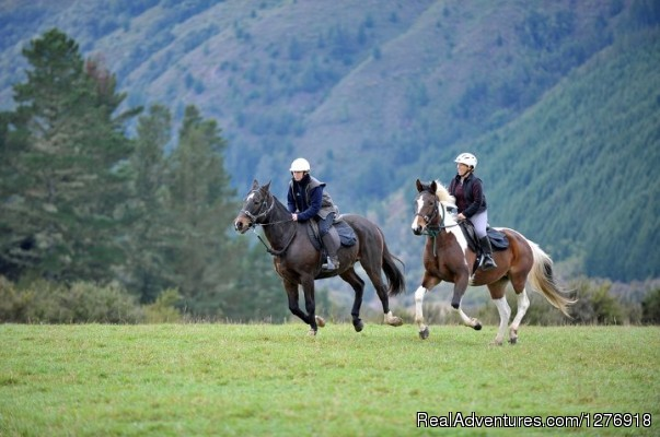 Nelson Horse Trek Adventure - Off the Beaten Trek