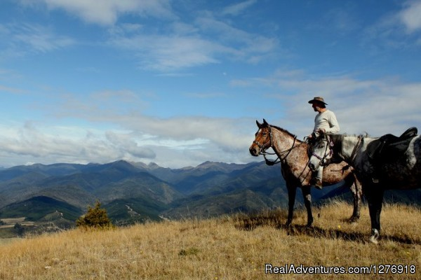 New Zealand Horse Trekking (#3 of 5) - Nelson Horse Trek Adventure - Off the Beaten Trek