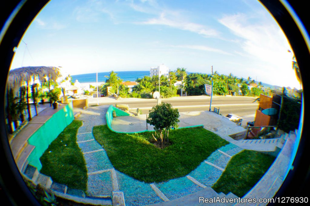 Grean Areas with ocean view | Image #2/8 | Surf Hostel Cabo