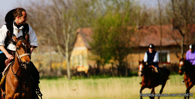 - Explore the Hungarian Puszta on horse back