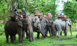 Elephant Camp Experience Laos Chin State, Myanmar Sight-Seeing Tours