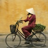 Vietnam Bike Adventure Hanoi And Beyond Sight-Seeing Tours Viet Nam