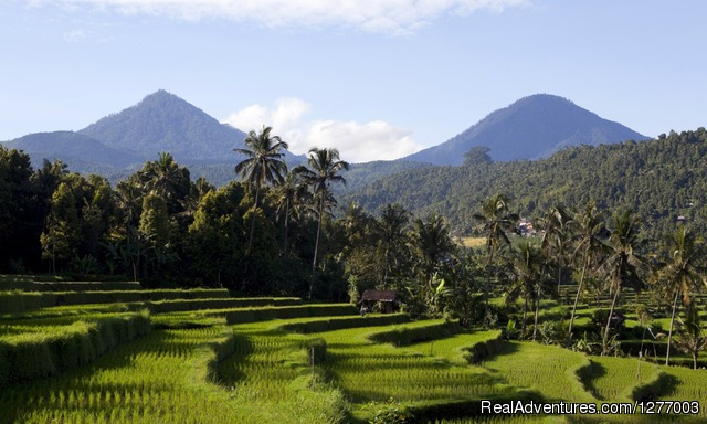 Image #3 of 7 - Meander The Mountains - Bali By Vw Convertible