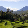Meander The Mountains - Bali By Vw Convertible