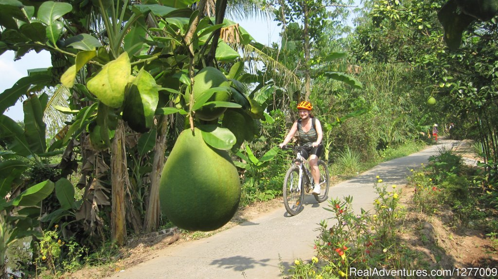 Image #3/8 | BIKING 5 days/4 nights - MEKONG DELTA