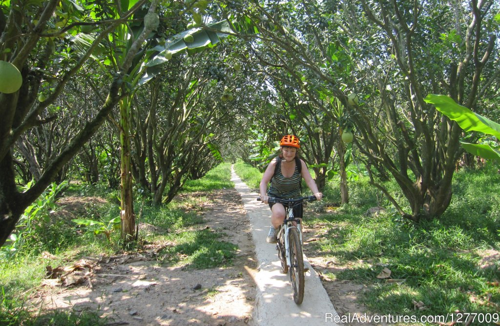 Image #6/8 | BIKING 5 days/4 nights - MEKONG DELTA