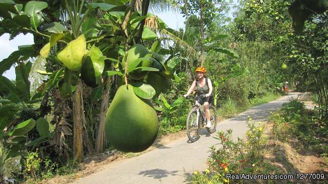 - BIKING 5 days/4 nights - MEKONG DELTA