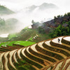 Explore Ancient Yunnan: Dali, Shaxi & Lijiang Sight-Seeing Tours China