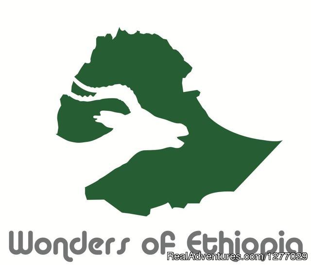 Tour and Travel: Wonders logo