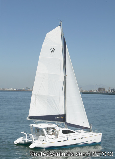 43 ft Leopard Luxury Sailing Catamara - Private Sail Boat Charters Puerto Rico