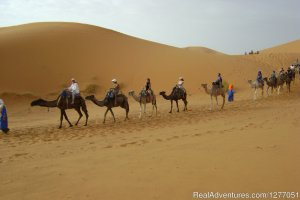 Hello Morocco Tours Marrakesh, Morocco Sight-Seeing Tours