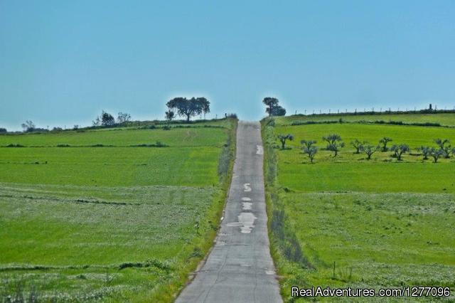 - Alentejo Wineries Bike