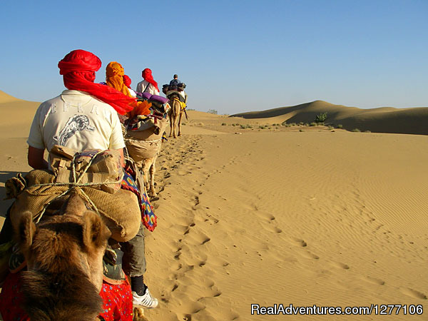 Camel Safari on Sam Dunes - Jaisalmer (#3 of 15) - 15-Day Heritage & Culture Tours of India