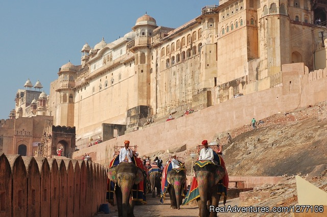 Amer Fort - Jaipur - 15-Day Heritage & Culture Tour of India