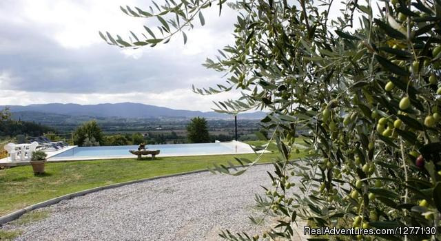 E 3 Rose Farmhouse - Cooking & Tours Vacation all inclusive in Tuscany