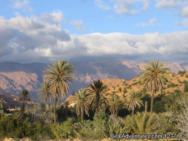 ethnoTOURS: Morocco Tafraoute