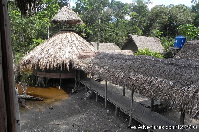 - Tapiche Reserve Real Jungle Experience