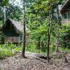 Tapiche Reserve Real Jungle Experience Iquitos, Peru Wildlife & Safari Tours