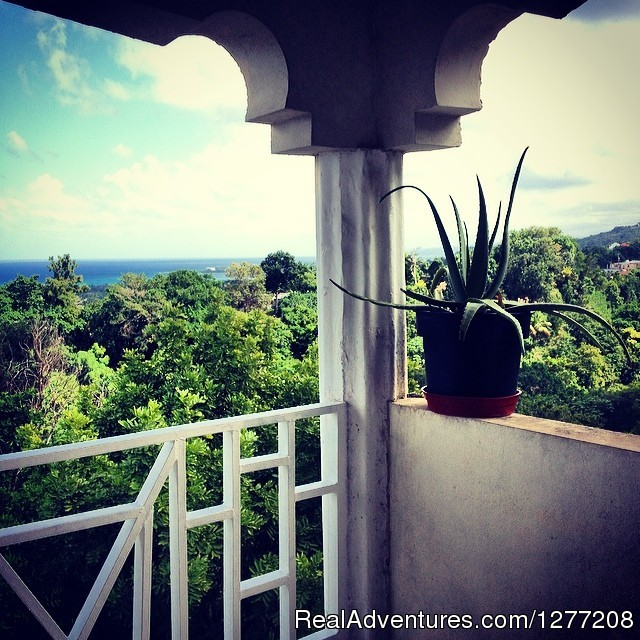 Amazing views - Hot Box Jamaica - a 420 traveller's joint