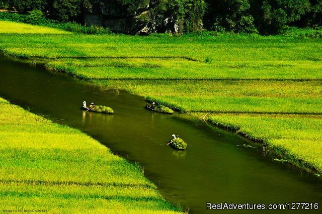 - Vietnam Holiday package trip on your request