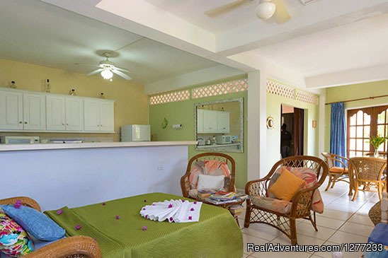 Corner View Living and Kitchen Space | Image #9/12 | Self Catering Villa and Apartments Rental
