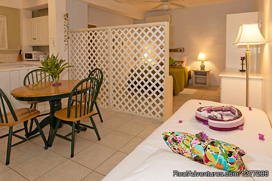 Artist Studio Apartment - Self Catering Villa and Apartments Rental
