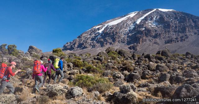 7 days Mount  Kilimanjaro Climbing.