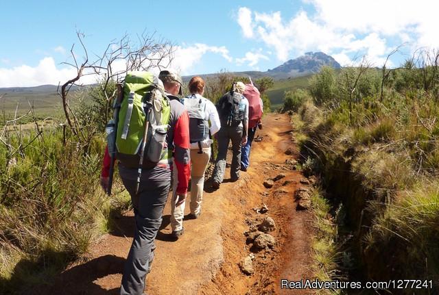 7 days Mount  Kilimanjaro Climbing.: : moshi tanzania hiking & trekking moshi