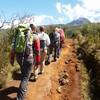 7 days Mount  Kilimanjaro Climbing. Hiking & Trekking Moshi, Tanzania
