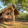 Wildlife exploration Eastern, Zambia Campgrounds & RV Parks