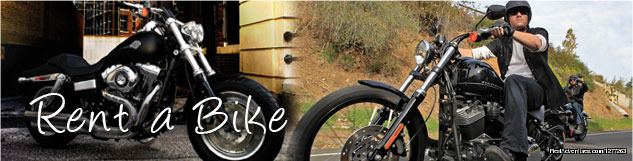 Bike Tour: Hire Harly