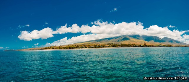 Small Maui Boat Trips & Whale Watching