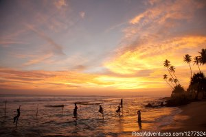 Discover Sri Lanka Colombo, Sri Lanka Sight-Seeing Tours