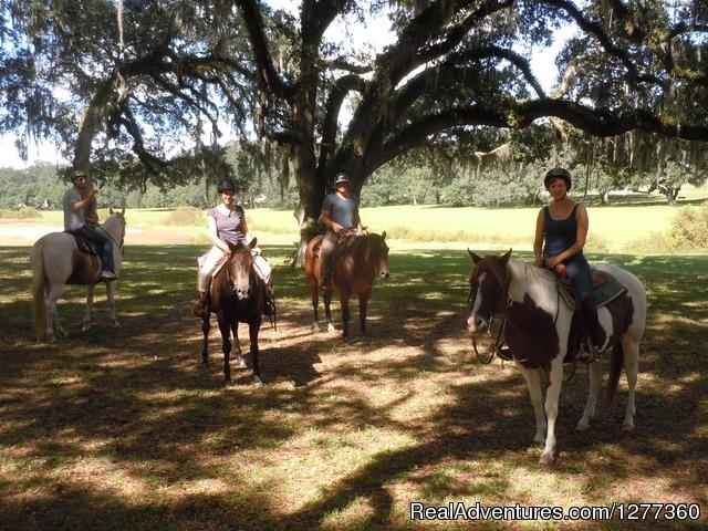 Quiet Relaxing Getaway At Happy Acres Ranch Dunnellon