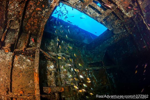 Scuba Diving Cyprus Ayia Napa Zenobia