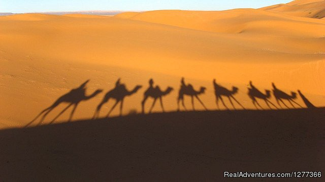 Camel Tour | Image #3/7 | Morocco Tours and Camel Trekking