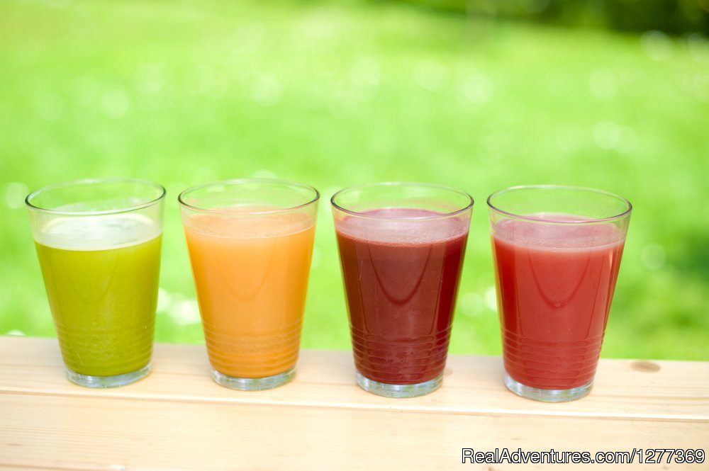 Vibrant Juice | Image #12/17 | Yoga, Gourmet Raw food/chocolate South of France
