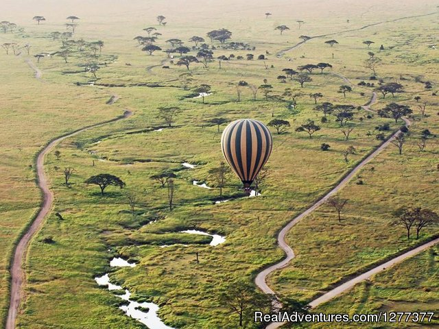 Balloon safari - 6 Days 5 Nights Best of Luxury Tented Camp & Lodge