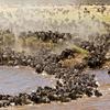 6 Days 5 Nights Kilimanjaro Adventure Climb